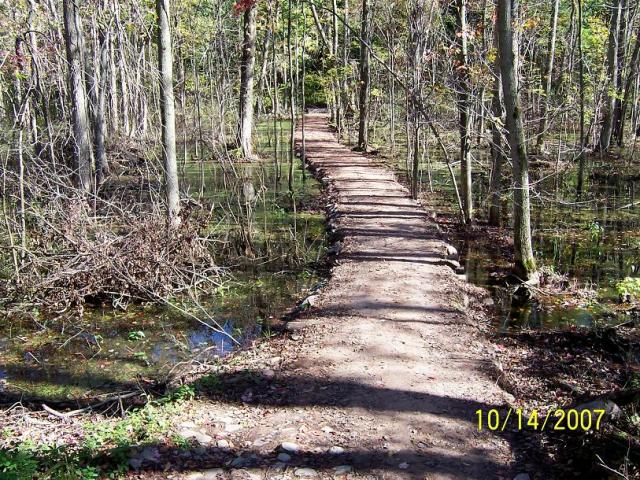 Example of corduroy trail design in a swamp.