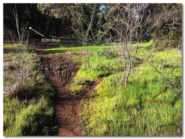 Wild Oaks Trail